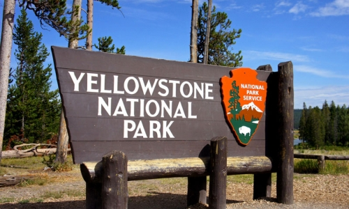 Yellowstone national park forest wood sign